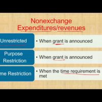 nonexcahnge expenditures revenues CPA exam FAR governmental accounting