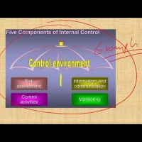 Internal control  information and communication and monitoring CPA exam Audit CMA exam