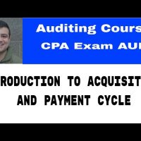 introduction to acquisition and payment cycle CA exam Auditing Course