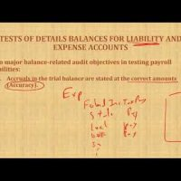 Auditing payroll cycle analytical procedures and test of details balance CPA